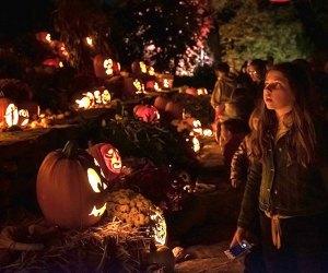 Naumkeag's annual pumpkin show is aglow come evening. Photo courtesy of Naumkeag/Facebook