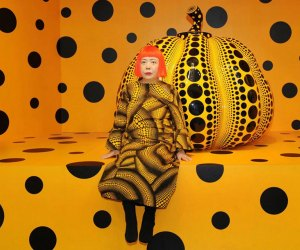 See Kusama: Cosmic Nature, the delayed exhibition set to open in Spring 2021 at NYBG