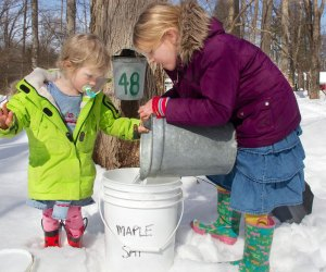 Syrup Saturday features maple-themed activities as well as a tasty brunch. Photo courtesy of New Canaan Nature Center