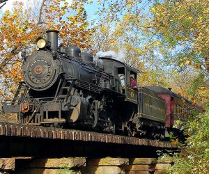 train on tracks in the fall