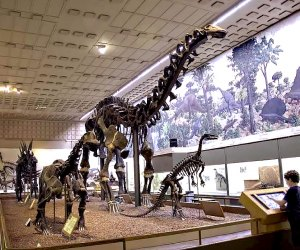 The Peabody Museum. Photo courtesy of the museum