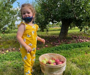 New Jersey's farms offer year-round family activities, including festivals, mazes, petting zoos, and fruit picking.