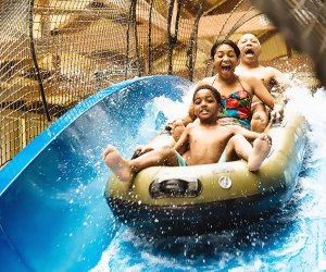 Take a family thrill plunge at Great Wolf Lodge.
