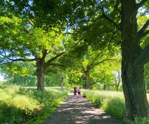 Enjoy a summer day trip to Rockefeller State Park