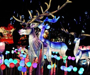 NYC Lantern Festival Pop-Up at Liberty Park. Photo courtesy of the festival