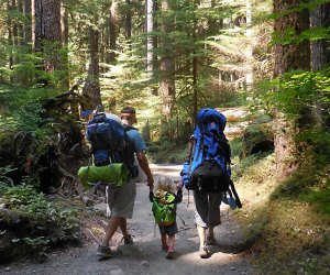 Camp and hike the forests of Olympic National Park. Photo courtesy of NPS