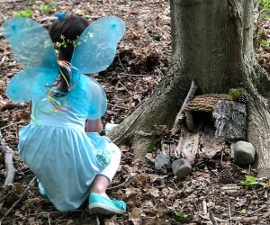 Grab your wings and flutter over to the 3rd annual Fairy Festival at the Orange Country Arboretum. Photo courtesy of the arboretum