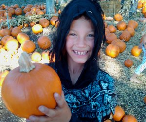 Pumpkin patches are a Halloween highlight for many kids