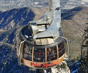 Family Road Trips From Los Angeles: Palm Springs