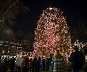 The Christmas tree in Princeton's Palmer Square will light up on Friday, November 29. Photo by Lily Lee