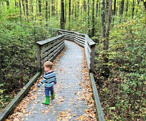 Explore a family-friendly fall hiking trail in New Jersey, Westchester, Long Island, further afield. Photo by Rose Gordon Sala