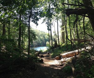 Pelton Pond in Clarence Fahnestock State Park