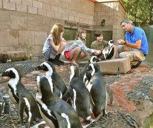 The Long Island Aquarium is one of Riverhead's top family attractions