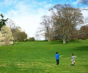 Enjoy a beautiful spring day at Planting Fields Arboretum. Photo by David Almeida