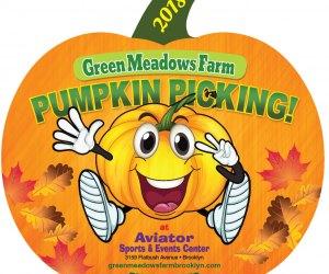 Brooklyn Pumpkin Picking