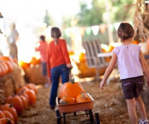 The annual PumpkinFest at Cornelius Nursery offers families a day of fun, free, fall-inspired activities. Photo courtesy of Cornelius Garden Center & Nursery.