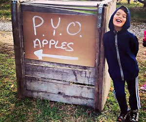 Head out of the city to an orchard for a day of apple picking. Photo by Matt Nighswander