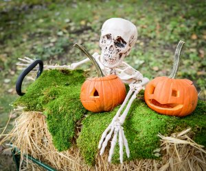 Dust off your costumes—Halloween at the Queens Botanical Garden is back. Photo courtesy of the garden