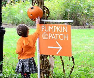Halloween at the Queens Botanical Garden is back. Little ones can show off their Halloween costumes and walk the trick-or-treat trail. Photo courtesy of the Garden