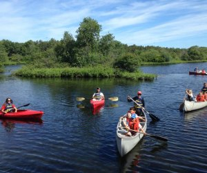 Canoing with the Quogue Wildlife Refuge