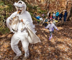 Playful characters abound along Quogue Wildlife Refuge's Enchanted Forest Trail.