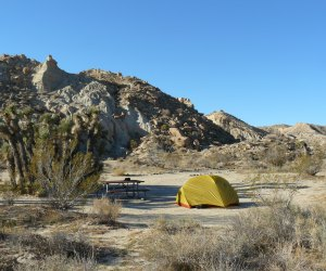 Last Minute Campgrounds in Southern California: Ricardo Campground