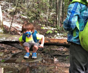 Young hikes can tackle these short nature walks. Photo courtesy of Roaring Brook Nature Center