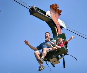 Fly high on the Soaring Eagle Zip Ride. Photo courtesy of Roger Williams Park Zoo