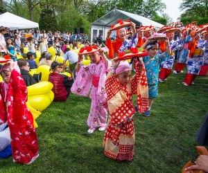 The Japanese Folk Dance Institute of NY performs at the Sakura Matsuri Festival at the Brooklyn Botanic Garden. Photo by Julie Markes for BBG