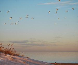 Salisbury Beach in winter is quieter, but no less beautiful.