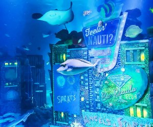 Tropical fish, rays, sharks and more are on view at Sea Life Aquarium.