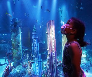 Take in an array of sea creatures at Sea Life's Sharks Fifth Avenue Exhibit where familiar landmarks get an undersea makeover.