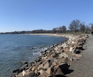 the beach ot sherwood island state park