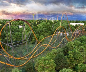 Jersey Devil Coaster at Six Flags Great Adventure.