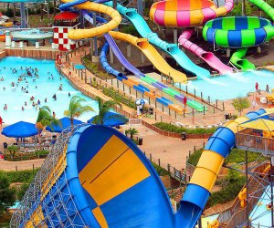 Catch some thrills at Hurricane Harbor, the water park at Six Flags Great Adventure and Safari.