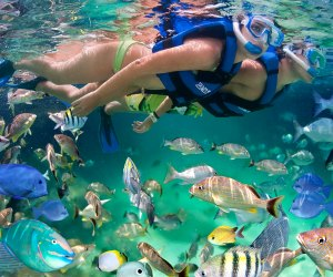 Photo of snorkeling at Xel-Ha in Mexico courtesy the water park.