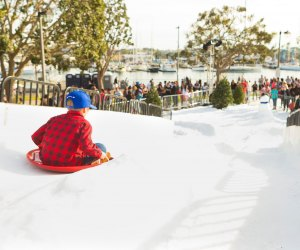 Snow sledding here in California! Photo courtesy of Marina del Rey Visitors Bureau