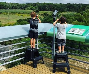 Learn about birding in the local area with the Young Birders Club at The South Fork Natural History Museum and Nature Center. Photo courtesy of the center