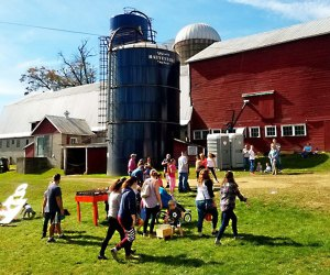 The popular Fall Festival at Soukup Farms features four days of fall farm fun.