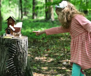 Find the Fairy houses on the South Mountain Fairy Trail. Photo by Rose Gordon Sala