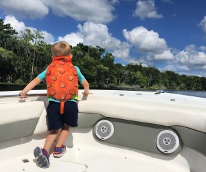 Kids are bound to see all kinds of wildlife on a boat trip along the St. Johns River. Photo by author