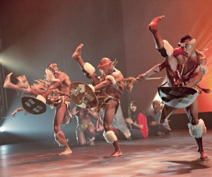 Thrill to Step Afrika!'s  high-intensity dance performance. Photo courtesy of Step Afrika