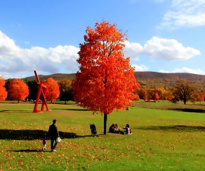 Storm King might not have traditional hiking trails, but its more than 500 acres of green open space offers a beautiful backdrop for a fall walk. Photo courtesy of Storm King Art Center