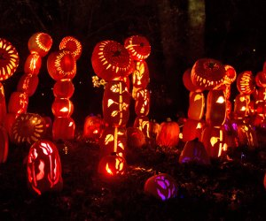 The Great Jack-O-Lantern Blaze's debut at Old Bethpage Village Restoration is one of the most anticipated Long Island events this fall. Photo courtesy of the Historic Hudson Valley