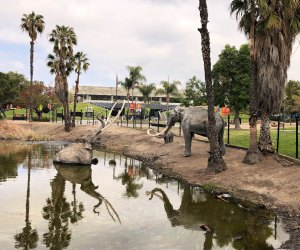 Why You Should Visit LACMA: The Tar Pits!