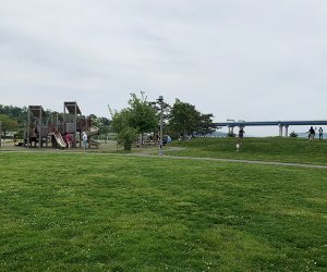 Playground and grassy area and Pierson Park