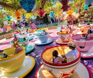 Minimize stress and maximize the fun for kids of all abilities. Photo courtesy of Walt Disney World