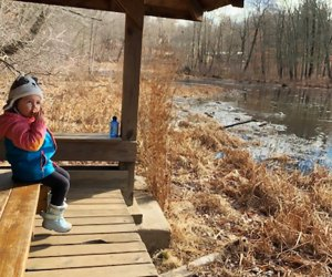 Enjoy a lakefront picnic mid-hike at Teatown Lake Reservation in Ossining.