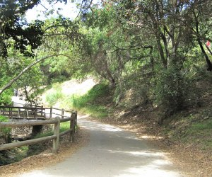 Temescal Gateway Park is filled with rocks and trees and creeks for little hikers to explore.