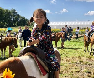 Pony rides are part of the farm fun at Terhune Orchards